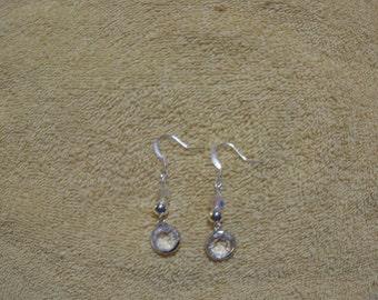 Clear Disk Earrings