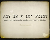 """Customize the size of your print and enlarge it to a 12 x 12""""!"""