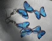 Beautiful dangling Blue Morpho butterfly resin earrings