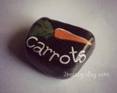Veggie Garden Rocks - Carrot