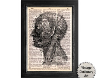 Head & Neck Arteries Anatomy Print - Printed on Vintage Dictionary Paper - 8x10.5 Anatomy Art