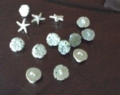 Mini sea shell buttons. Great for scrapbooking crafts sewing etc.