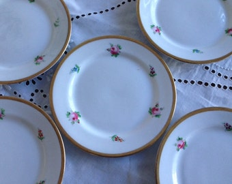 sale  Antique German Hand Painted Porcelain  plates ,6 sets.Very  elegant  roses French decor