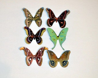 Moth Magnets Set of 6 Refrigerator Magnets Kitchen Decor Multi Color Insects Handmade Home Decor Bedroom Bathroom Decor Gifts