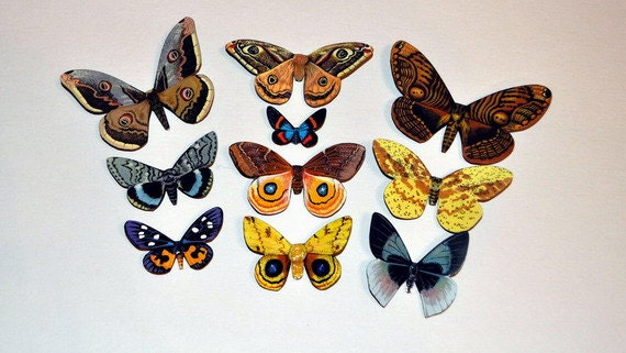 Butterfly Moth Magnets Set of 10 Insects Refrigerator Magnets Handmade Home Decor