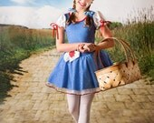 TWO IN ONE 8ft x 16ft Yellow Brick Road / Vinyl Photography Backdrop
