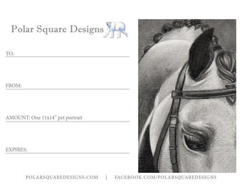 "Gift Certificate for an 11x14"" Fine Art Portrait"