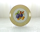 Vintage handpainted fruit plate marked Bavaria Tirschenreuth Germany Pasco