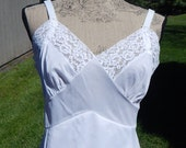 Vintage Lace Slip Full Length Slip Movie Star Romantic Lingerie Nylon Size 38 Pin Up Girl