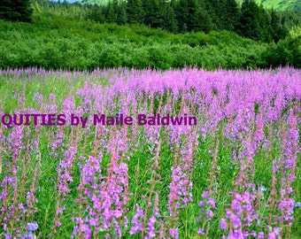 Photograph of Alaskan Fireweed Flowers and Field, 8 x 10 inch size glossy photo art photography Summer wall home decor purple green