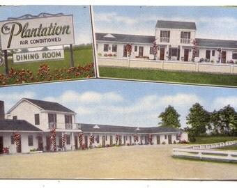 The Plantation Postcard chrome Route 301 Allendale South Carolina Florida Court Dining Room Motor court Motel