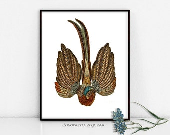 BIRD DANCE - digital image download - printable antique bird illustration retooled for image transfer - totes, pillows, prints, clothes