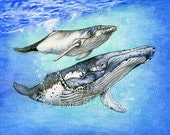 Humpback whale painting, whale art print, ocean painting, under the sea, kids wall art, nature painting, ocean art, fine art print