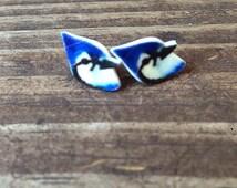 Blue jay earrings bird earrings bird jewelry animal earrings animal jewelry