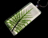 Stair Step Moss (Hylocomium splendens) Rectangle Glass Necklace, woodland, bryophyte, plant jewellery, nature jewelry, Silver plated chain