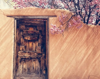 Santa Fe, New Mexico photograph, adobe wall, spring, flowers, pink, door photo, travel photography, southwest