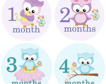 Little Girl Owls Monthly Birthday Stickers
