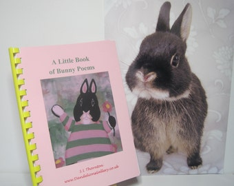 Bunny Rabbit Poetry Book Poems Written by Bunnies