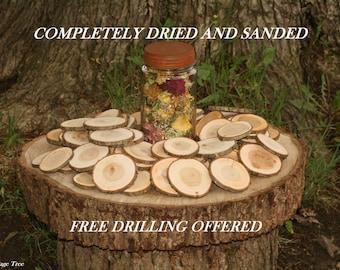 Rustic Wood Disc 625 Dried Tree Slices Medium Cherry Tree Cookies Wood Blanks Wood Burning Blanks Name Tags Wedding Decor Art Craft Blanks