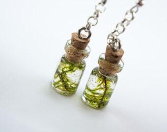 Real moss earrings in a glass bottle. OOAK earrings. Whimsical woodland resin moss jewelry. Real moss. Green earrings. Gift for her