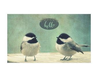 Hello Birds - Printed Gallery Canvas wrap, wall art, photography,nature, birds, home decor,
