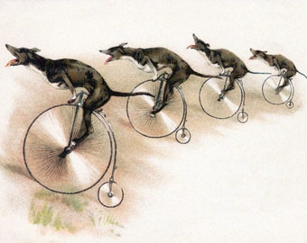 Dogs on Bikes Fabric Block | Repro from Vintage Image | Greyhound Dog