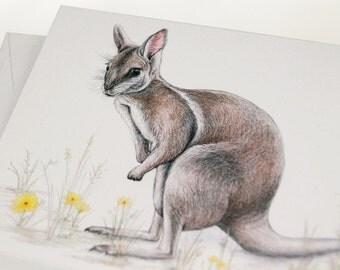 Bridled Nail-tail Wallaby - Australian wildlife art greeting card. endangered animal like small kangaroo grasses butterfly