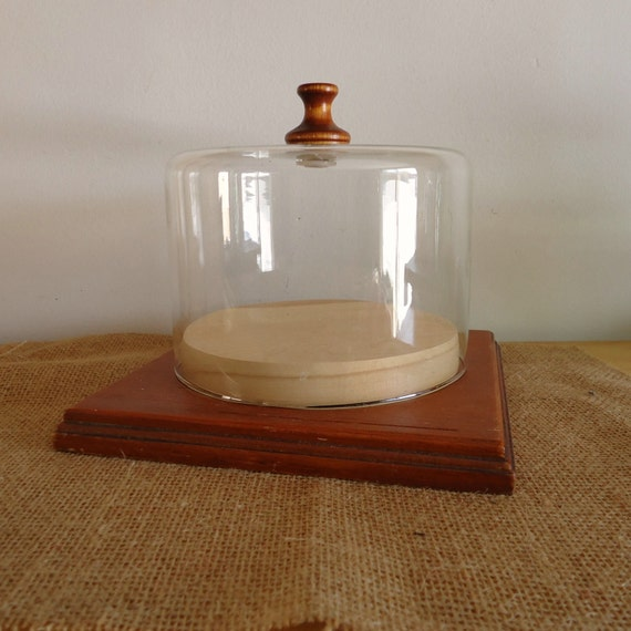 Vintage Kitchen Display Cheese Server Glass Dome Oddities
