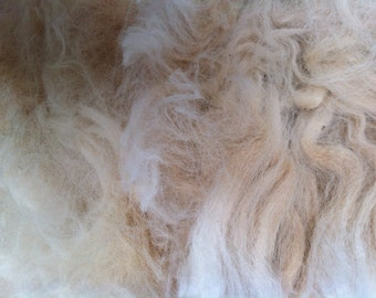 Raw Unwashed Huacaya Alpaca Fleece for Craft, Spinning and Stuffing
