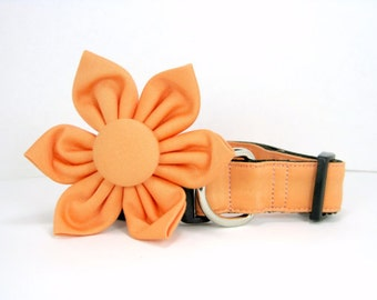 Wedding dog collar-Peach  Dog Collar with flower set  (Mini,X-Small,Small,Medium ,Large or X-Large Size)- Adjustable