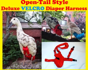 """Deluxe """"Velcro"""" OPEN TAIL Diaper Harness for Pet Fowl Made-to-Order"""