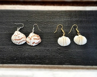 Scallop Shell earrings...