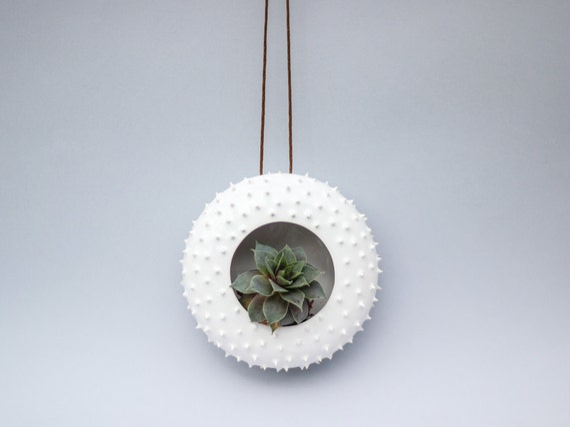 Modern designed spiky hanging ceramic planter/ flower pot/ succulent ...