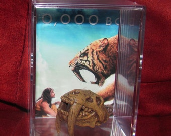 10,000 B.C (Inspired)  Fossil Head Display..Own 1 Today ! (We Combine Shipping Charges On Multiple Purchas's)
