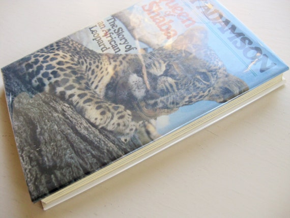 """Joy Adamson's """"Queen of Shaba: The Story of an African Leopard."""" 1980 First US Edition, hardback"""