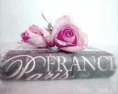 "Book Photography, Shabby Cottage Chic, Paris Decor, Romantic Cottage Print, Pink Rose Still Life, Paris France Book Print- ""Paris Romantic"""