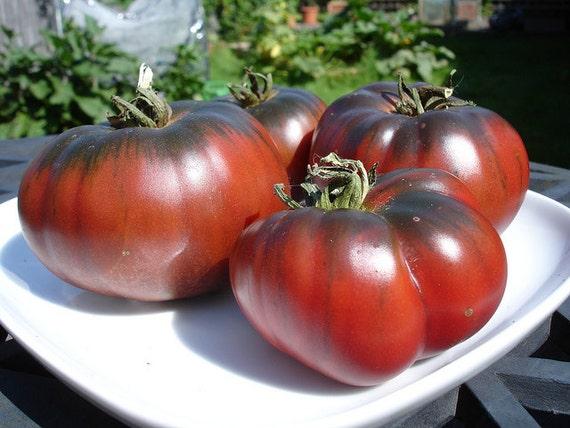 tomato black krim heirloom tomato seeds organic great. Black Bedroom Furniture Sets. Home Design Ideas