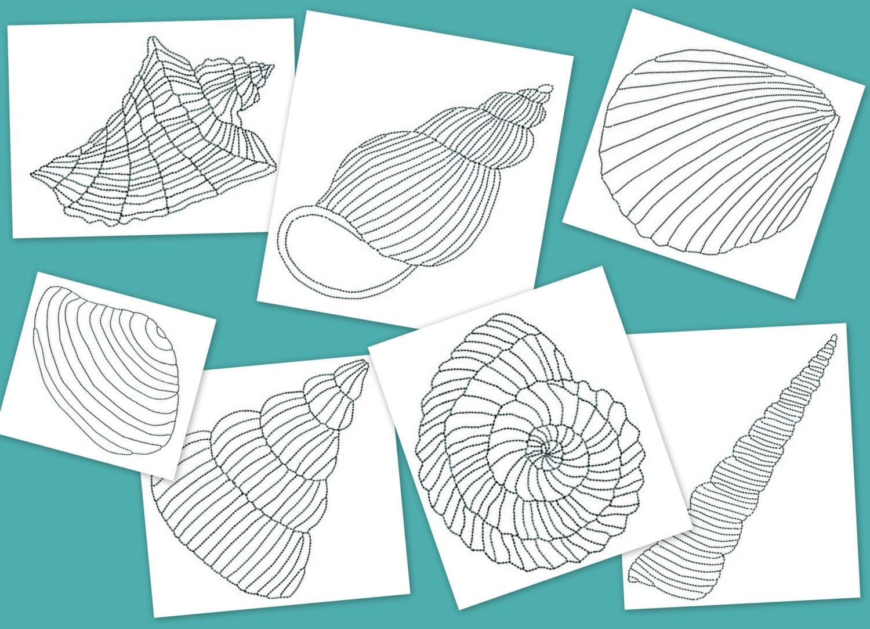 Shell Designs Sea Shells Embroidery Design 7 Shells In 4 Sizes Sea Shells