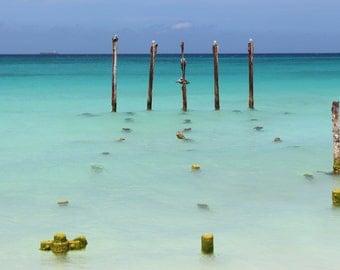 Beach Photograph - Art Photography - Birds at Sea
