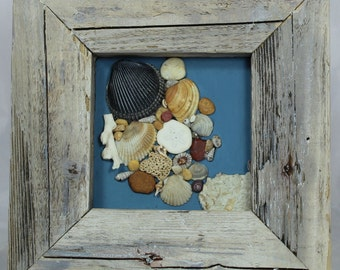 Driftwood framed assemblage with shells, on handmade paper.