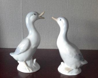 pair of geese by John Jenkins