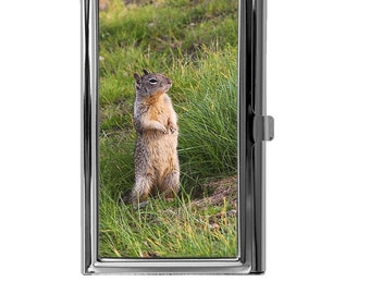 Business Card Holder, Metal Card Case, Mini Wallet, Squirrel Image Design, Animal, Nature, Wildlife, Credit Debit Card ID Wallet