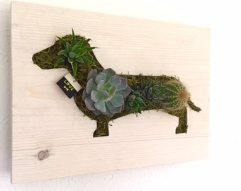 CUSTOM COLOR: Dachshund Succulent + Cacti Vertical Garden | Vertical Planter | Living Wall | Wall Planter | Hanging Planter | Wood Pl