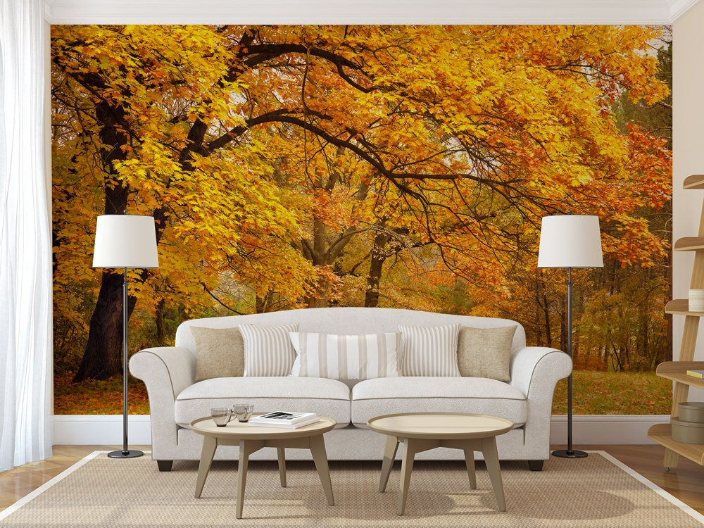 Autumn Leaves Picture Wallpaper Repositionable And Removable