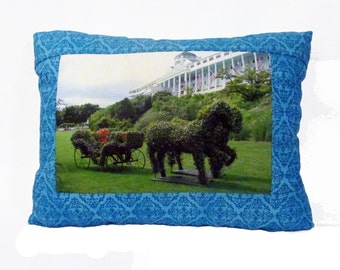 Scenic Photo Pillow.