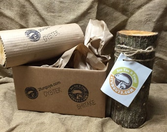 Oyster Mushroom Log   Grow your own Oyster Mushrooms at Home  Organic Fresh