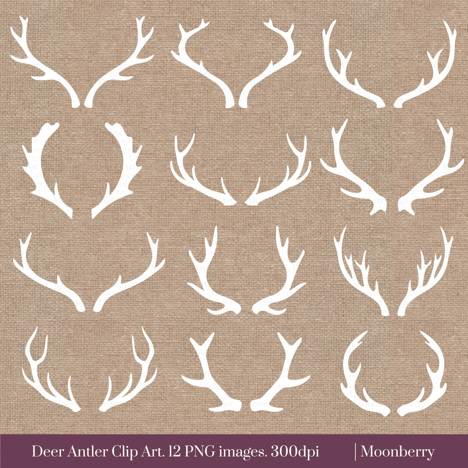 White Deer Antler Clip Art DEER ANTLER by MoonberryDigitalArt