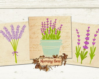 Lavender clipart 12 Digital labels 2.5 x 2.5 inch square - Digital scrapbooking download