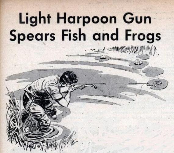 Bb Gun Hunting Frogs - phimvideo.org