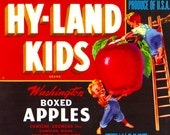Original Vintage Hy-Land Kids Brand Apple Crate Label Yakima Washington 1940s Great Kitchen or Kids Room Art. Looks Great Framed....